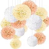 15er Set Pompoms Deko Bunt Seidenpapier Pompons für Hochzeit, Geburtstag, Party Champagner Weiß