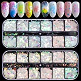 Ebanku 24 Farben Nagel Glitzer Pailletten Set, Glitter Sequin Shiny Irisierende Bunte Abziehbilder Nail Art für Maniküre Gesicht Körper (2 Boxen)